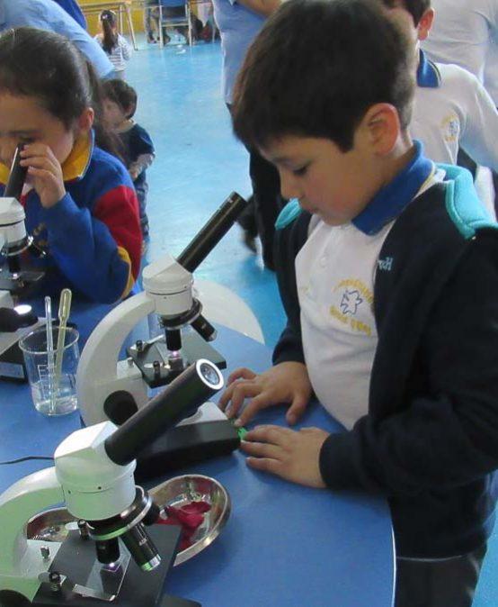 Feria Científica